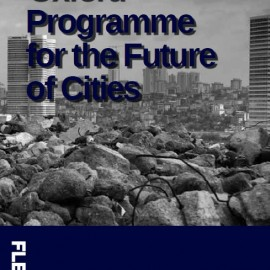 Oxford Programme for the Future of Cities 1